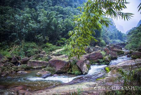 畫稿溪國家級自然保護區