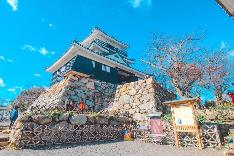 Hamamatsu Castle1