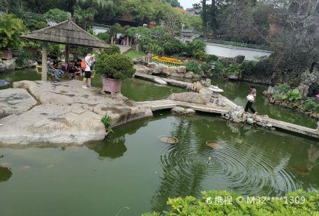 綠色植物生態園