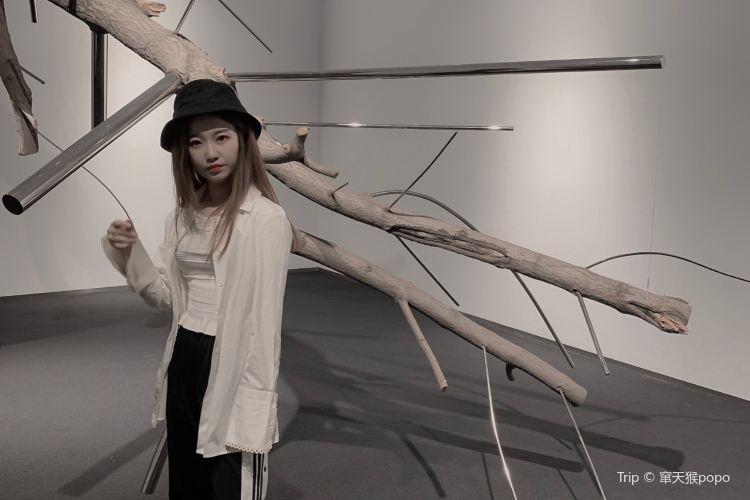 Shanghai Gallery of Art1