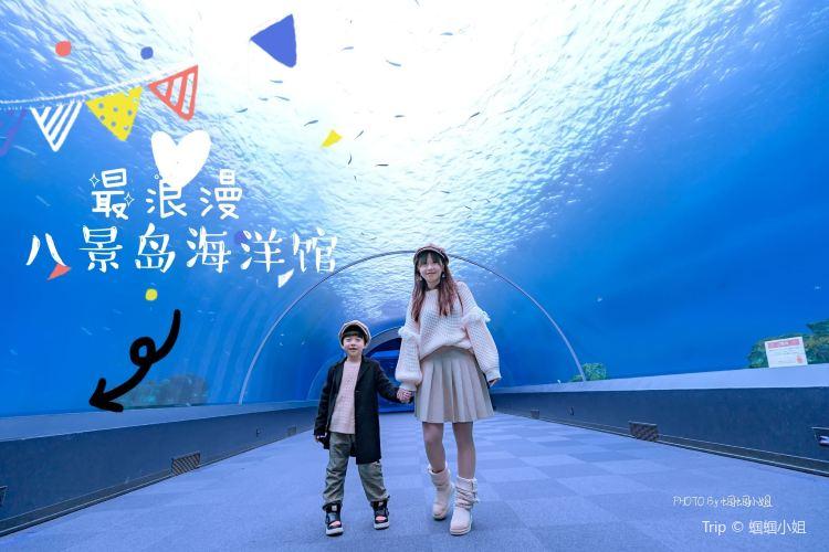 八景島海島樂園3