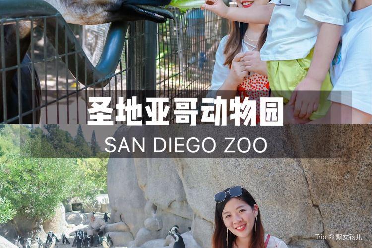 聖地亞哥動物園4