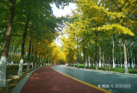 Baigou Park