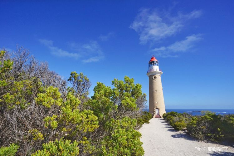 Cape du Couedic Lighthouse2