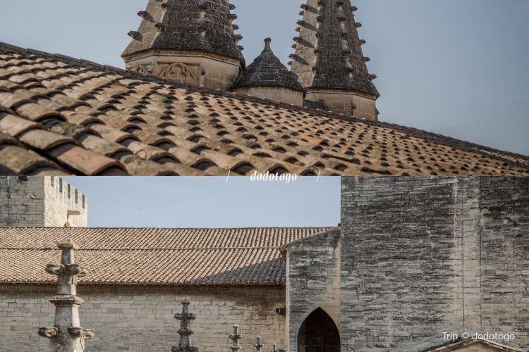 阿維尼翁聖母大教堂4