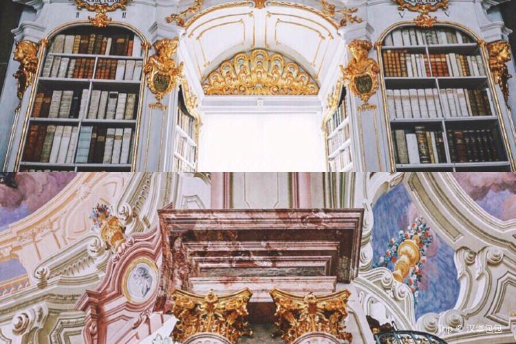 阿德蒙特修道院圖書館4