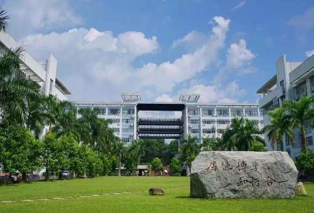 Yulinshifan College