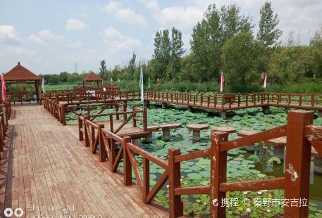 Longhu Fengjingqu Dong Botanical Garden