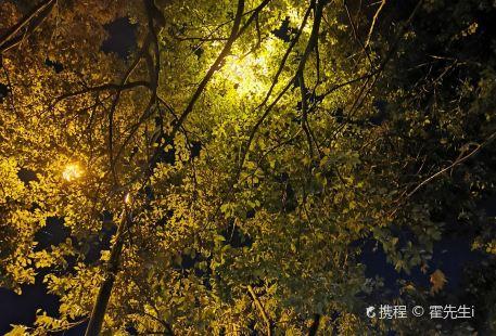 샤오산공원