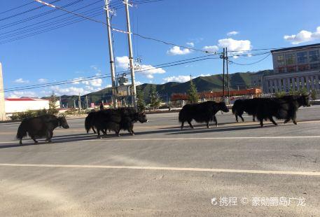 Qinghai Golog Gesa'er Museum