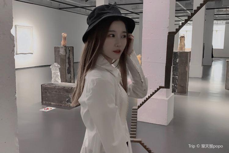 Shanghai Gallery of Art3