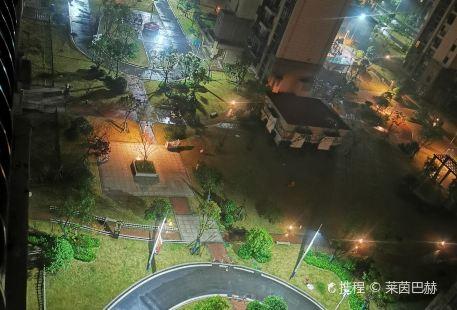 Zhangbo Culture Square