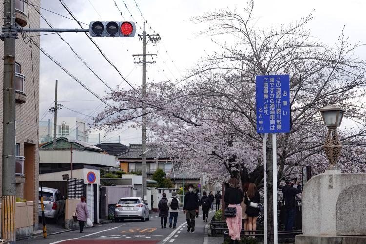 Yamazaki River2
