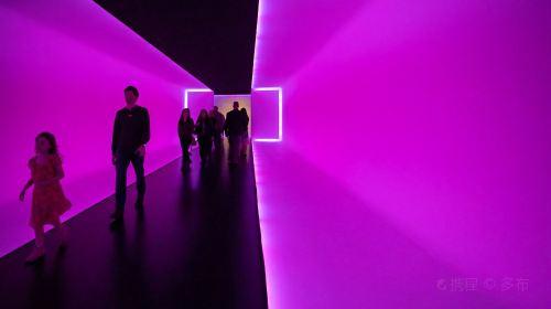 The Houston Museum of Fine Arts