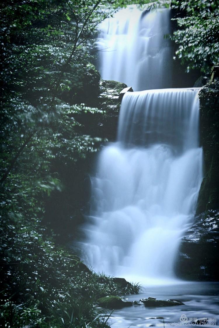 借母溪國家級自然保護區