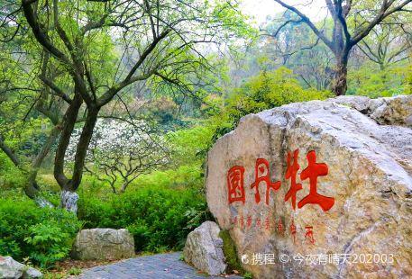 Longzhong Botanical Garden