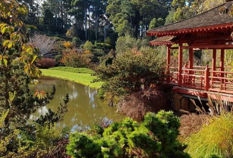 Emu Valley Rhododendron Garden