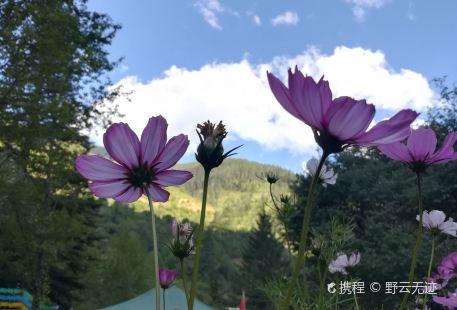華龍休閑山莊