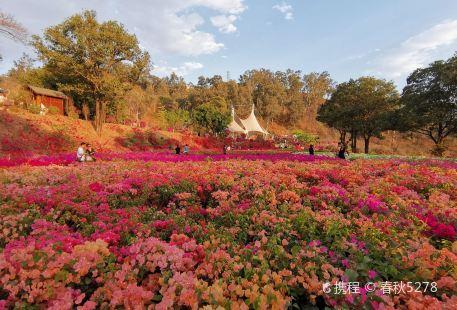 Hemenkou Park