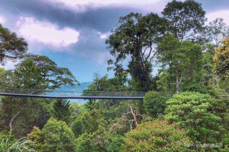The Habitat Penang Hill1