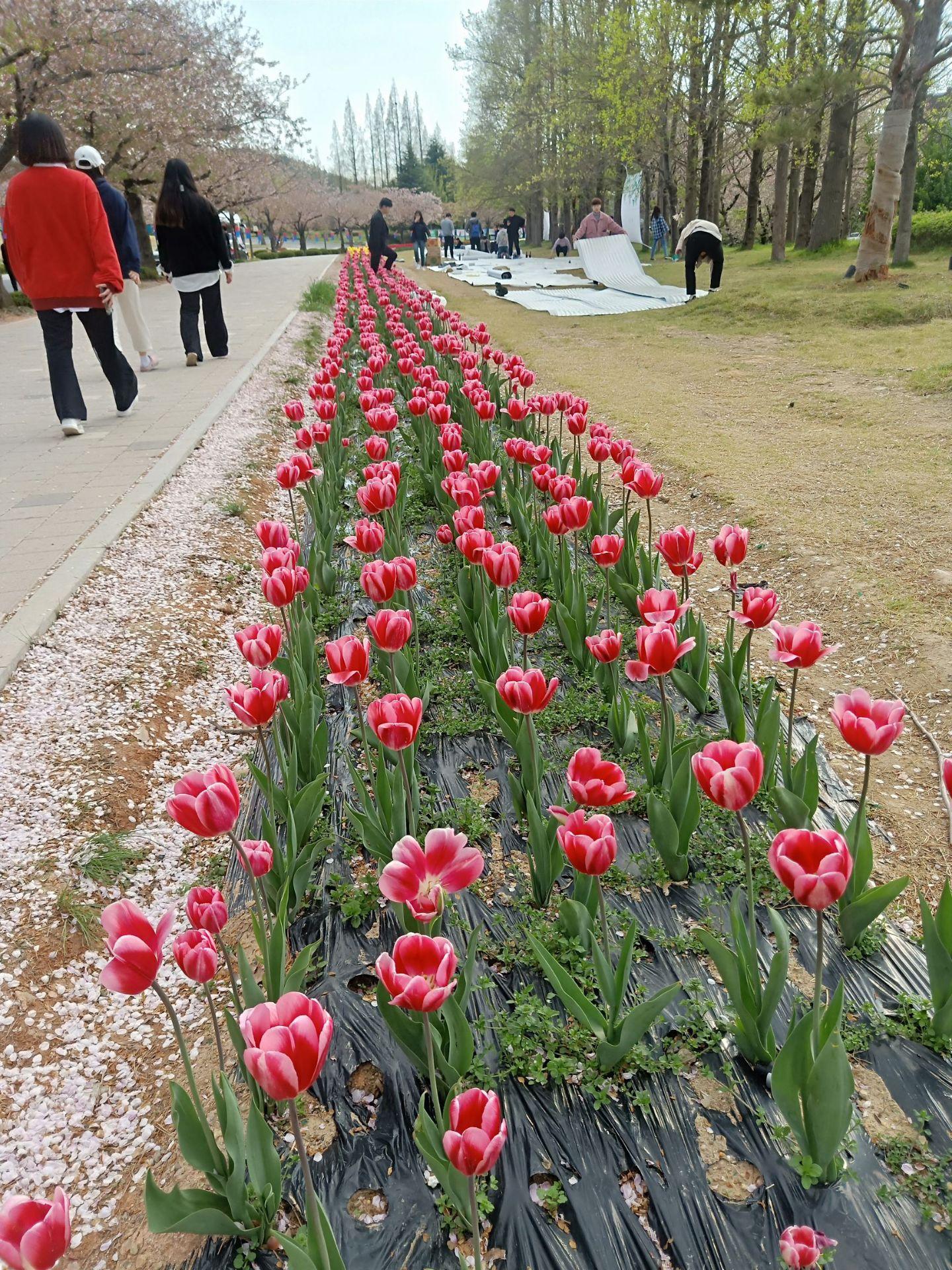 Dongfang Ruihai Hot Spring