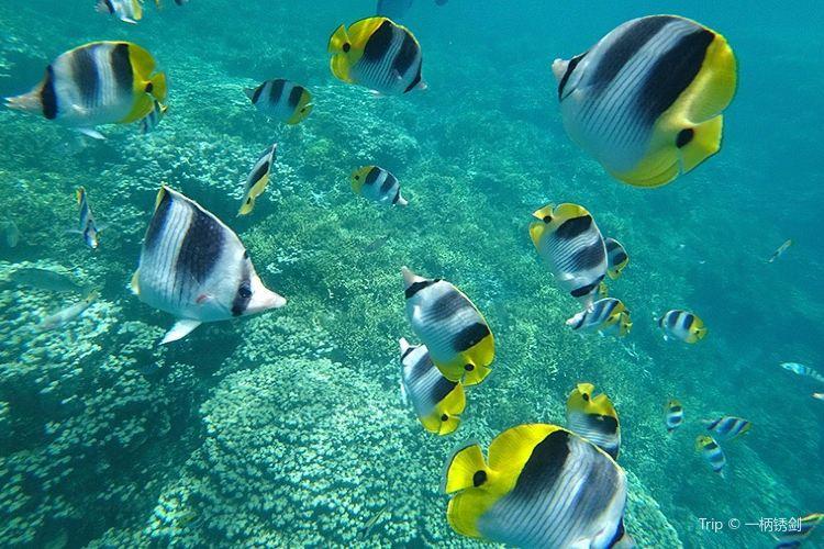 魚眼海洋公園3
