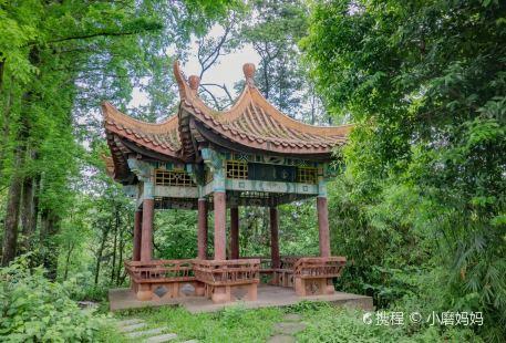 Zhangjiashan Park