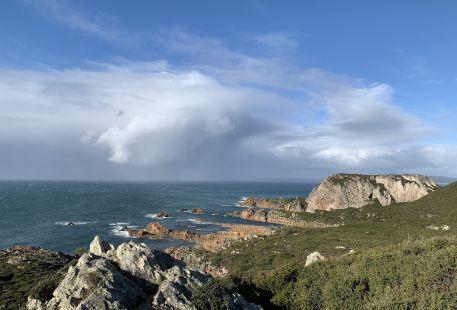 Rocky Cape National Park Tasmania