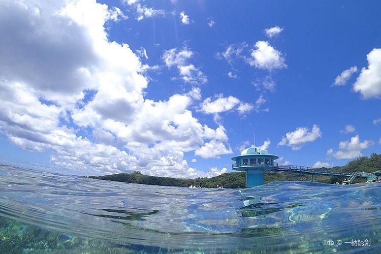 魚眼海洋公園4