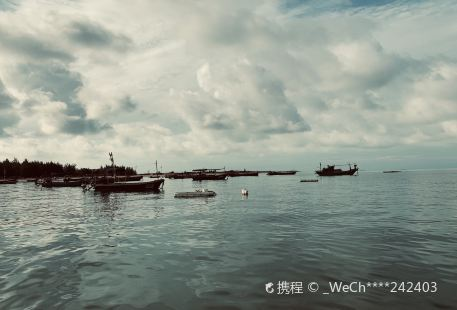 Coral Conservation Area of Jiaowei