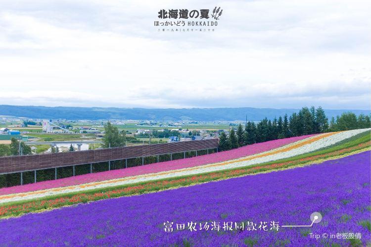 Hinode Park3