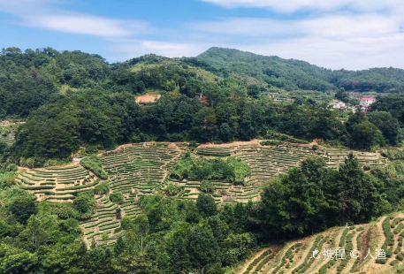Fujian Shibi Modern Agriculture Sightseeing Garden (North Gate)