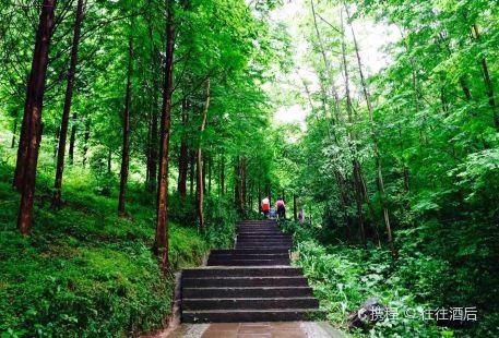 Fengqi Mountain