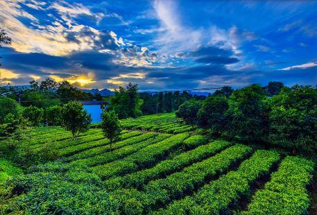 楓香坡侗族風情寨