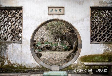 Wang's Little Garden