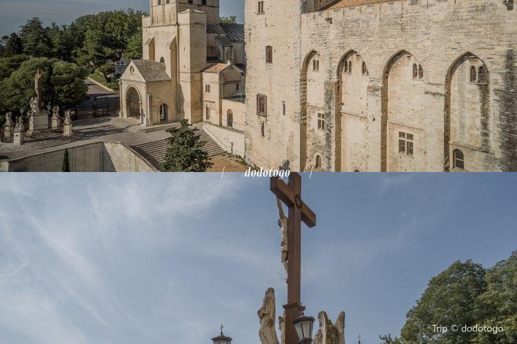 阿維尼翁聖母大教堂1