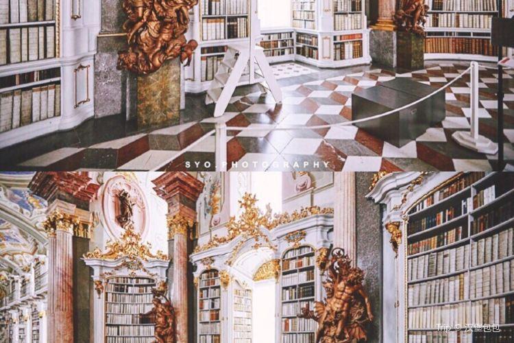 阿德蒙特修道院圖書館2