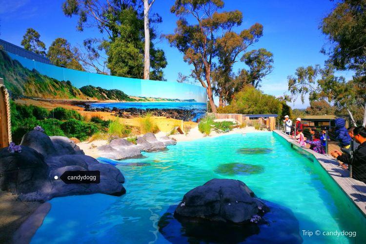 Ballarat Wildlife Park1