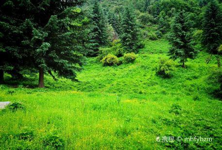Lanzhou Bamboo Ditch