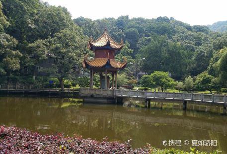 Mt. Yuelu Forest Park