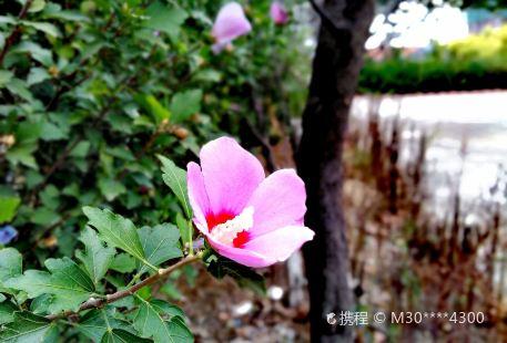 Beimengzhen Quanmin Jianshen Square