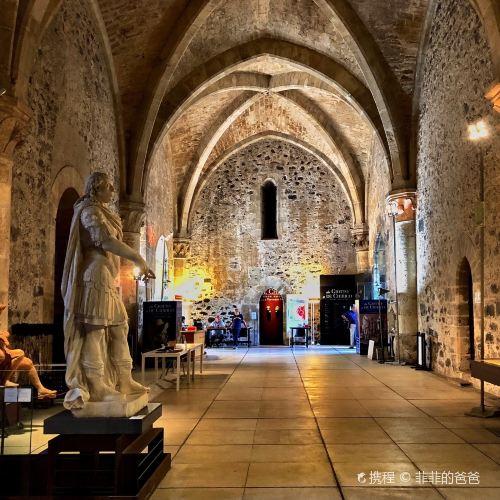 烏爾斯諾城堡和城市博物館