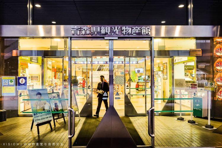 Aomori Tourist Information Center, ASPAM2