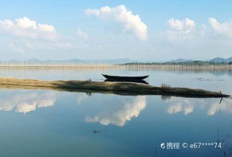 Shenjin Lake National Nature Reserve