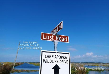 Lake Apopka Wildlife Trail