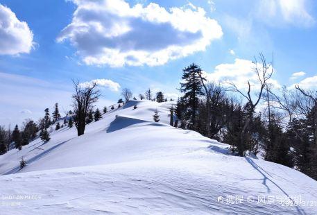 慶嶺風景區