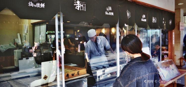 Meizhibing (taizaifu)1