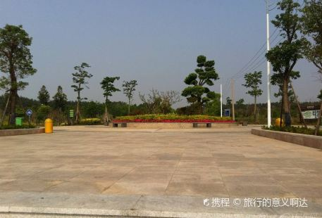 Quangang Botanical Garden