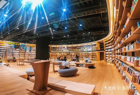Xiaodao Library