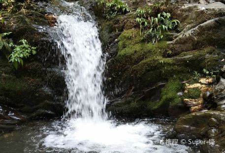 Wuyunjie National Nature Reserve